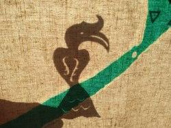 Hornbill shadow puppet behind the screen