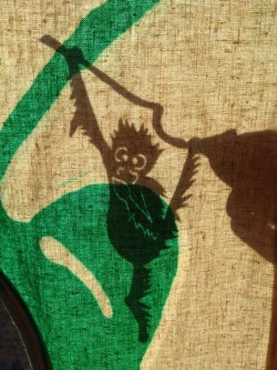 Orangutan shadow puppet behind the screen