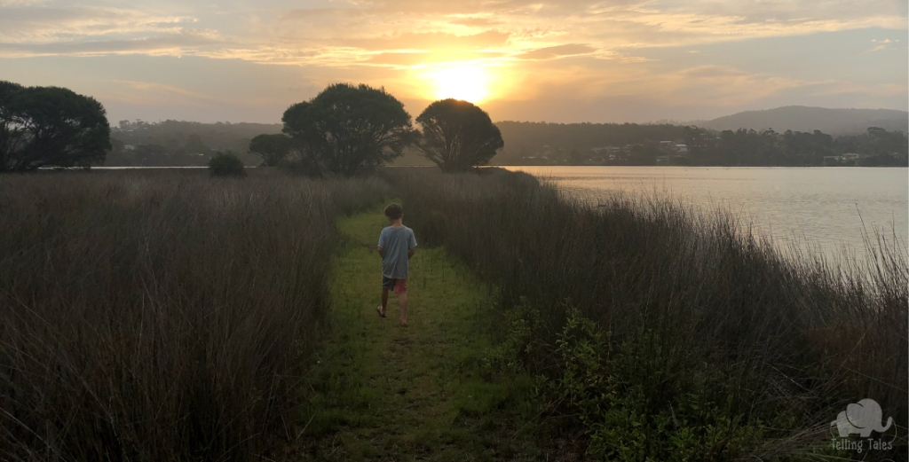 Sunset at wetlands in Eden NSW