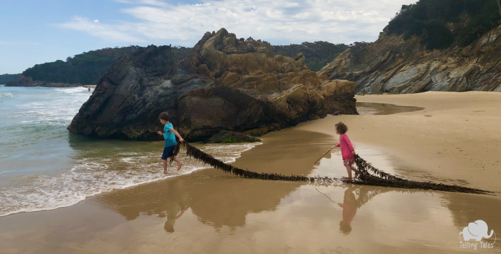 Two kids pull a seaweed rope while playing at an untouched beach